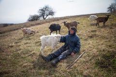 Ein alter Mann in der unordentlichen Kleidung sitzt auf einem H?gel und lebt eine Menge seiner eigenen Ziegen gegen den Hintergru stockfotografie