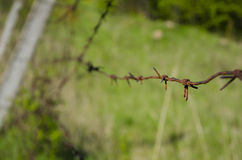 Ein alter Stacheldraht auf dem verlassenen Gebiet Lizenzfreie Stockfotografie