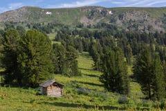 Ein altes Blockhaus in einem Koniferenwald in Bergen Altai Krai Stockfoto