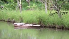 Ein altes Boot im Kanal des Parks stock video