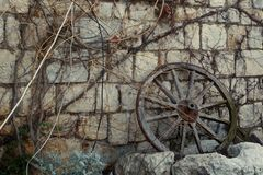 Ein altes h?lzernes Rad nahe einer Steinwand ?berw?ltigt mit einer Rebe abget?nt stockfotografie