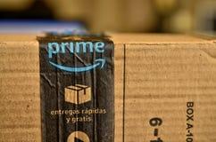 Ein Amazonas-Paket wurde geliefert stockbilder