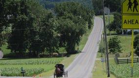 Ein amisches Pferd und ein verwanztes Reiten entlang der Straße auf der Landschaft stock footage