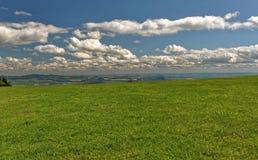 Ein anderer Schuss des frischen grünen Grases und der zerstreuten Wolken Stockbilder