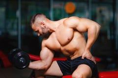 Ein anziehender Sportler mit einem muskulösen Körper, der einen Dummkopf in einer Turnhalle auf einem unscharfen hellen Hintergru lizenzfreie stockfotografie