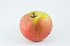 Ein Apfel Stockfotografie