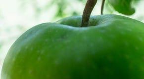 ein Apfel ein Tag ist für Gesundheit gut Stockbilder