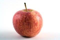 Ein Apple stockbild