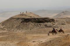 Ein arabischer Mann führt Kamele durch die Wüste Die Giseh-Hochebene T stockfotografie