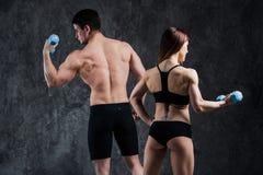 Ein attraktives Eignungspaar des sportlichen Mannes hält Barbell und dünne blonde Frau hält Dummköpfe über grauem Hintergrund Stockfotografie