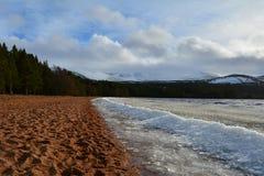 Ein Aufbau des Eises auf dem Ufer von Loch Morlich Stockbilder