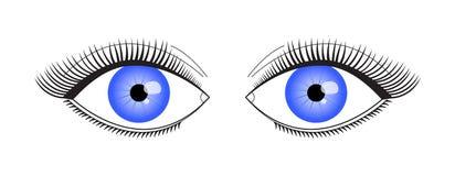 Ein Augenlid mit den langen Wimpern stock abbildung