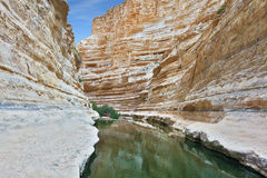 Ein Avdat Canyon, continue the journey. Picturesque valley in the desert. Ein Avdat Canyon, continue the journey Stock Image