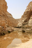 Ein Avdat Canyon, Israel Royalty Free Stock Photography