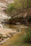 Ein Avdat Canyon, Israel Stock Image