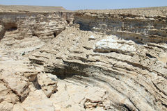 Ein Avdat Canyon. Israel. Royalty Free Stock Images