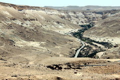 Ein Avdat Canyon. Israel. Stock Photography