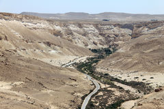 Ein Avdat Canyon. Israel. Stock Photos