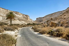 Ein Avdat National park in desert of Negev, Israel Stock Photos