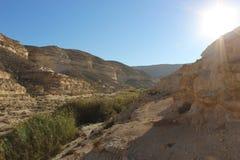 Ein Avdat, rastro nacional de Israel Fotografía de archivo