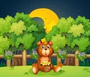 Ein Bär am Holz mitten in der Nacht stock abbildung