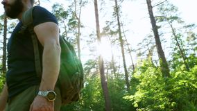 Ein bärtiger Mann mit einem Rucksack geht durch den Waldsonnigen Tag Ruhe stille stock video footage