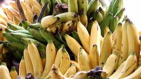 Ein Bündel Bananen stock video