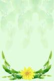 Ein Bündel Blätter Stockfotografie