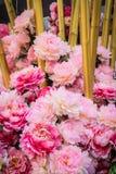 Ein Bündel der rosa Blume Stockfotografie