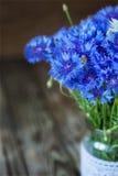 Ein Bündel der schönen Sommerblume der Kornblume Lizenzfreie Stockfotografie