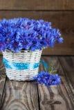 Ein Bündel der schönen Sommerblume der Kornblume in den weißen BU Lizenzfreie Stockbilder
