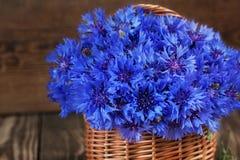 Ein Bündel der schönen Sommerblume der Kornblume im Korb Stockbilder