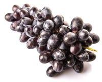 Ein Bündel Frucht V der blauen Trauben Stockfotografie