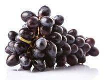 Ein Bündel Frucht VI der blauen Trauben Lizenzfreies Stockbild