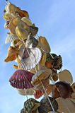 Ein Bündel Seeshells. lizenzfreie stockbilder