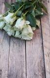 Ein Bündel weiße Rosen lizenzfreie stockbilder
