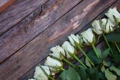 Ein Bündel weiße Rosen lizenzfreies stockbild