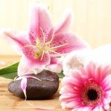 Ein Badekurortaufbau der rosafarbener Lilienblumen und -steine Lizenzfreies Stockbild