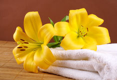 Ein Badekurortaufbau mit gelben Lilienblumen Lizenzfreies Stockfoto