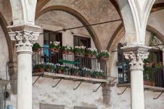 Ein Balkon voll von weißen Cyclamens unter den Bögen von Santissima stockfoto