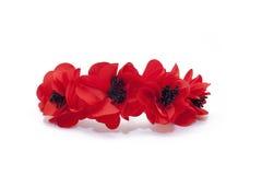 Ein Band auf dem Kopf von roten Mohnblumen Stockbild