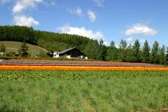 Ein Bauernhof im Hokkaido, Japan Lizenzfreie Stockfotos