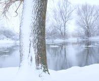 Ein Baum abgedeckt mit Schnee Lizenzfreies Stockfoto