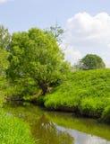 Ein Baum durch einen Fluss Stockbild