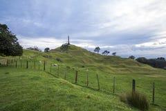 Ein Baum-Hügel, Auckland, Neuseeland Stockfoto