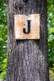 Ein Baum mit einem Buchstaben Stockbild