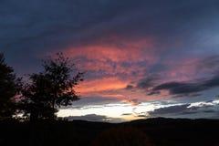 Ein Baumschattenbild und schönen roten Wolken bei dem Sonnenuntergang, abstrakte Formen machend Stockfotos