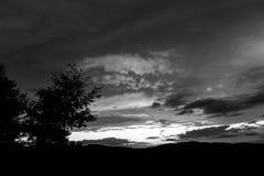 Ein Baumschattenbild und schönen Wolken bei dem Sonnenuntergang, abstrakte Formen machend Stockbild