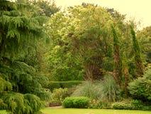 Ein beautifuly landschaftlich gestalteter Garten in der Cotswolds-Region von England lizenzfreie stockfotos
