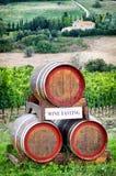 Ein Becher Wein in der Hand Stockbild